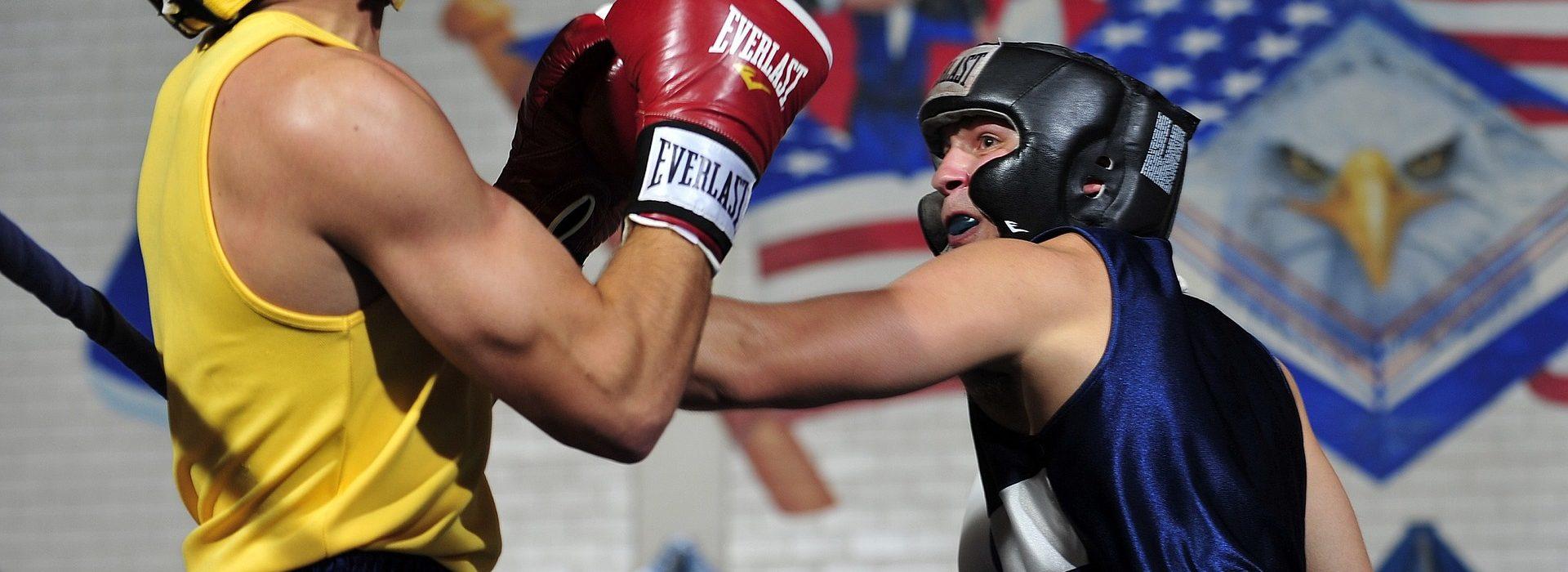 boxers-1919379_1920
